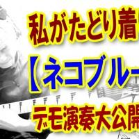 guitar,blues,cat,猫,ネコ,ブルース,ギター,エレキ,アコギ,鳴き声,キャット