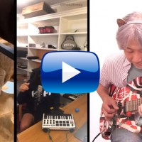Alugalug Cat,The Kiffness,funny,song,movie,guitar,tone,meow